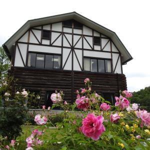 『畜産センター公園の薔薇園』