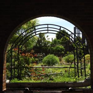 『長良公園の花と実と風景を・・・・・』