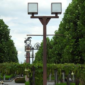 『木曽三川公園センターのコスモス風景』