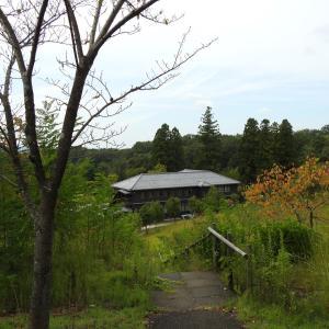 『校舎の中のドライフラワー展(ぎふ清流里山公園)』