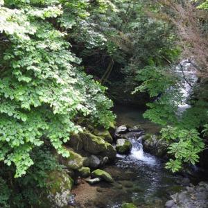 『釜ヶ滝・三の滝を見に・・・・・』