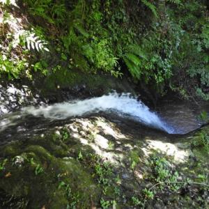 萩の滝(上滝)を散策~
