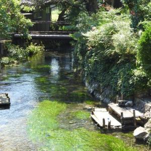 『湧水が集まり流れる地蔵川』
