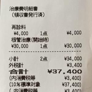 自費診療の歯科医治療2回目、37,400円