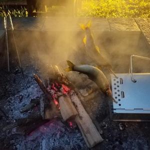 鮎の串焼きwithキャプテンスタッグ 炭焼き名人 FD火起こし器