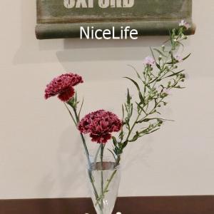 【防災片付けQ&A】防災目線でおすすめの花器を教えて!私は【セリア】の割れないグラスも使ってます