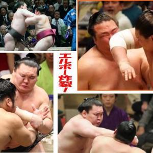 相撲が好きです。だけど、白鵬は嫌いです!!