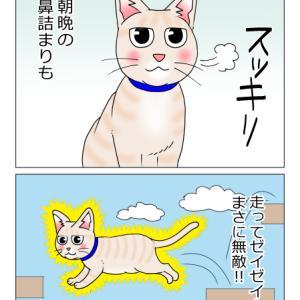 あんこ&麦992 ハイパームギー(猫まんが)