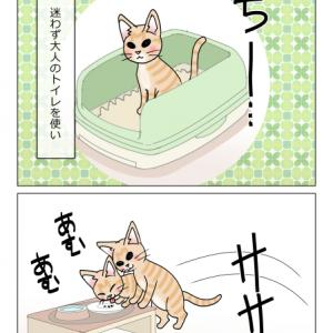 あんこ&麦996 生きる力(猫まんが)