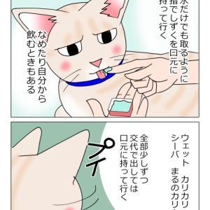 あんこ&麦1002 籠る(猫まんが)