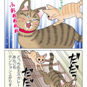 あんこ&麦1009 最後の砦(猫まんが)
