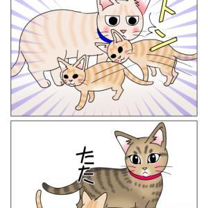 あんこ&麦1018 ニックネーム(猫まんが)
