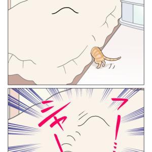 あんこ&麦1077 映えない戦い(猫まんが)