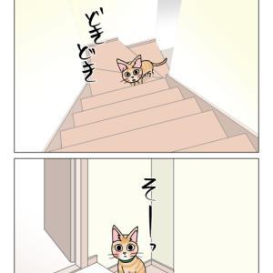 あんこ&麦1081 まるとおにい②(猫まんが)