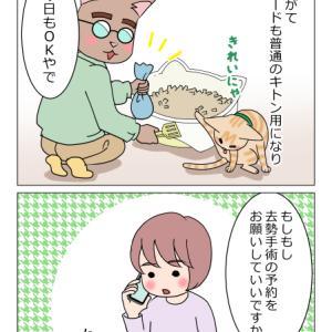 あんこ&麦1105 まるのXデー①