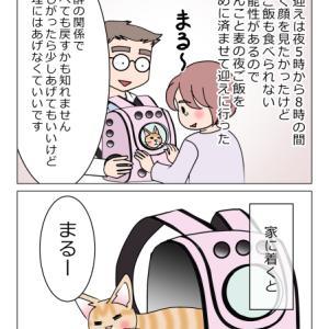 あんこ&麦1107 まるのXデー③行きて帰る
