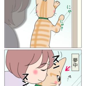 あんこ&麦1131 猫変態ホイホイ