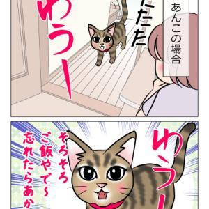 あんこ&麦1169 出来る猫のご飯コール