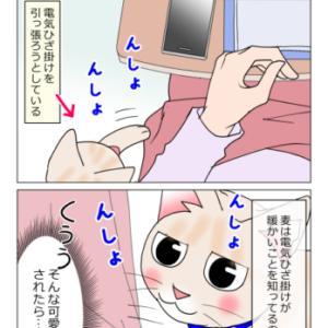 あんこ&麦1298 元祖番猫