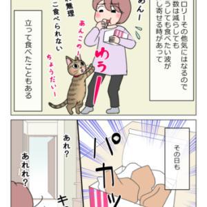 猫とフライドチキン