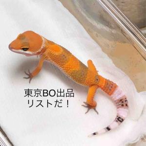 2018.9.16東京BO生体出品リスト