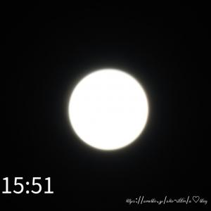 *部分日食**お花*