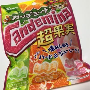カンデミーナグミ 超果実味