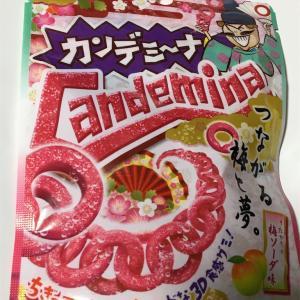 カンデミーナ グミ 梅ソーダ味