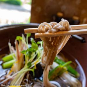 弘りんの夙川散歩(1)_ 紫陽花に誘われ夙川に。でもまずは涼し気なお蕎麦を(大正庵 苦楽園口)