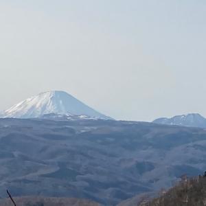 4日目②〜実はGWくれちゃんと桜追いかけ旅行していました