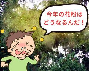 暖冬で悲喜こもごもだけど、花粉の飛散が一番心配!