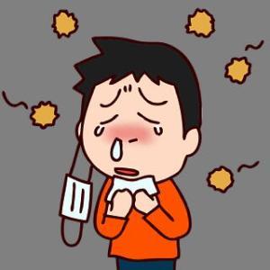 スギ花粉にかわりヒノキ!これが重症になるもと