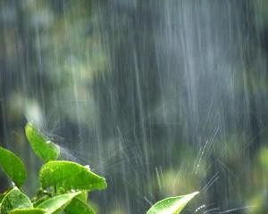 週末ずっと雨が続きそう!鬱陶しいし被害も心配