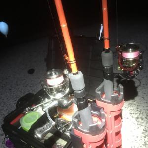 フロートメバリング釣果