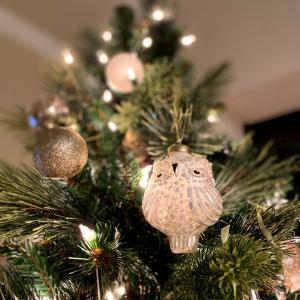 マンモグラフィーの結果とクリスマスツリーのラッキーチャーム