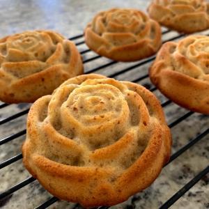 薔薇のレモンケーキ +《続》もやし Day 3