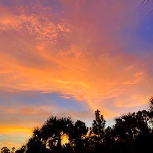 月曜断食 Day171 〜 朝焼けの空にうっとりで始まる水曜日