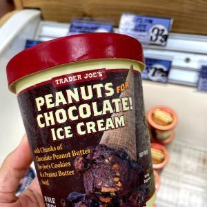 フロリダ南端、噂のトレジョのピーナッツチョコレートアイスクリームが最強だった件