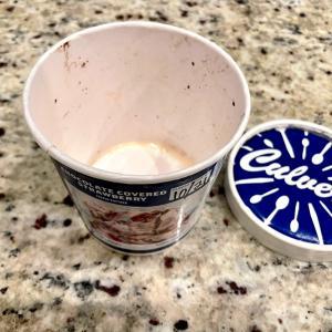 月曜断食 Day514 〜 アイスクリーム食べてますけど…