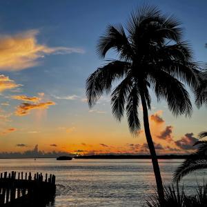 フロリダ南端、 A night to remember