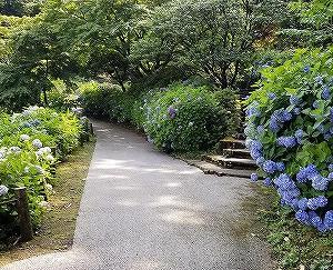 卯辰山と大乗寺丘陵公園