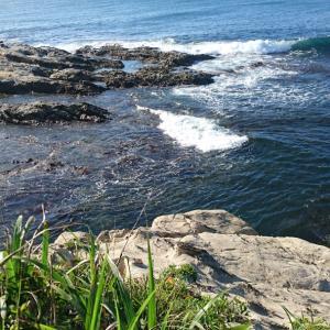 海の日。海と潜在意識について