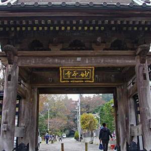 妙本寺(みょうほんじ)総門