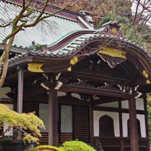 妙本寺(方丈門・書院・本堂・歴代廟・鐘楼)