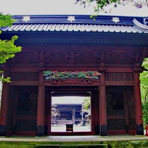 妙本寺(二天門)朱色が美しい