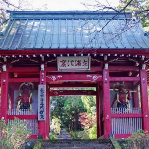 最乗寺(さいじょうじ)仁王門