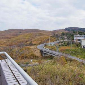 秋吉台(あきよしだい)日本最大のカルスト台地