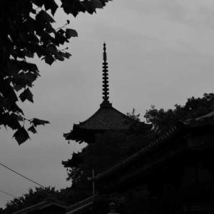 東寺(とうじ)京都
