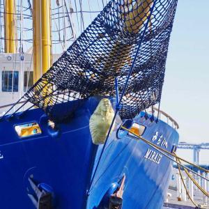帆船(みらいへ)横浜