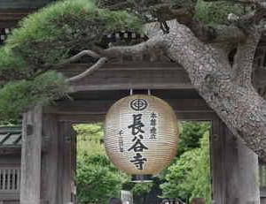 長谷寺「十一面観世音菩薩」は1300年を迎えました
